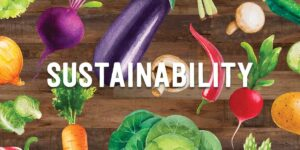 FOOD WASTE IN IRELAND – HOW TO BE SUSTAINABLE IN FOOD PRODUCTION?